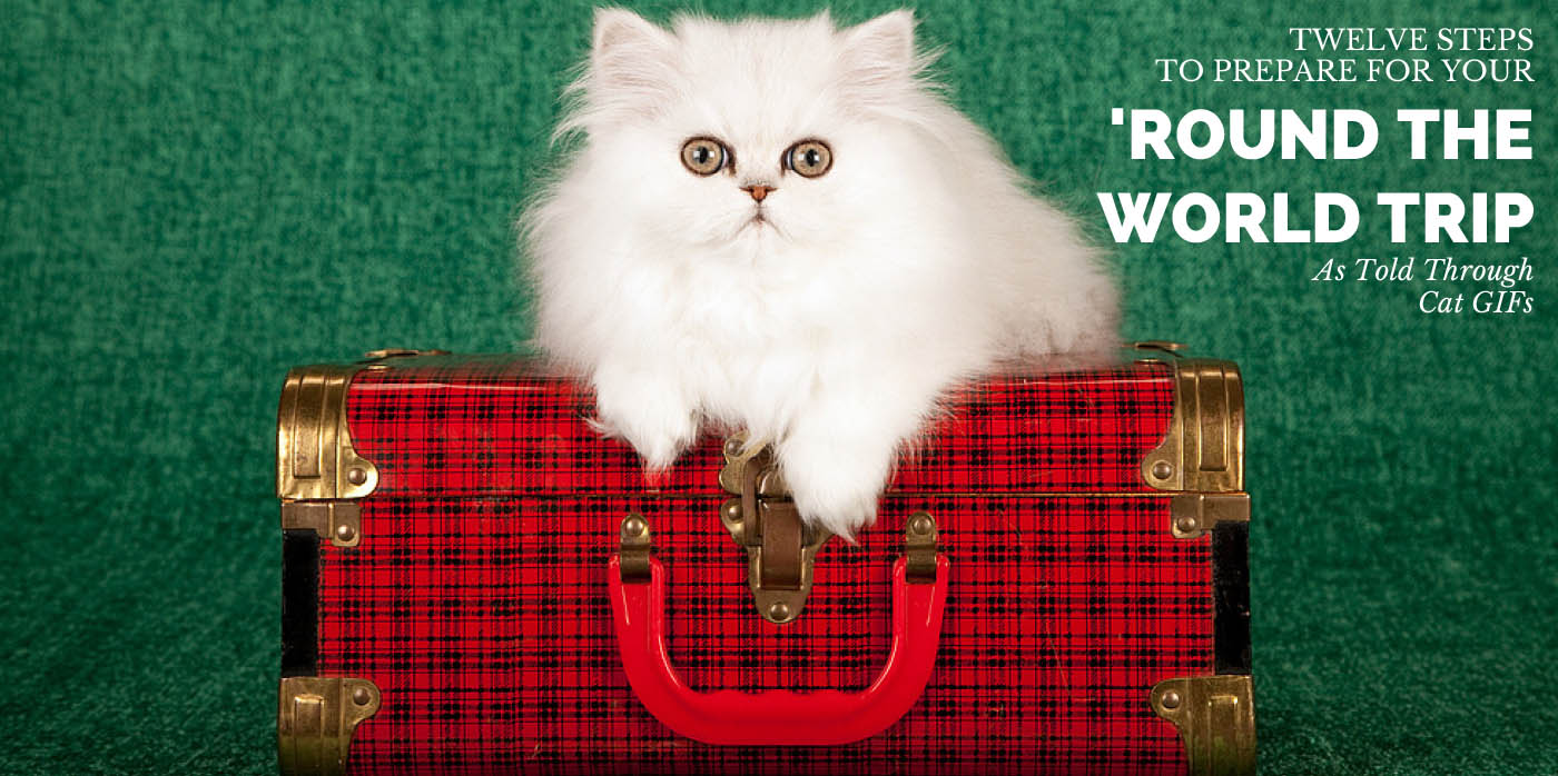 Twelve Steps to Prepare for Your 'Round the World Trip, As Told Through Cat GIFs