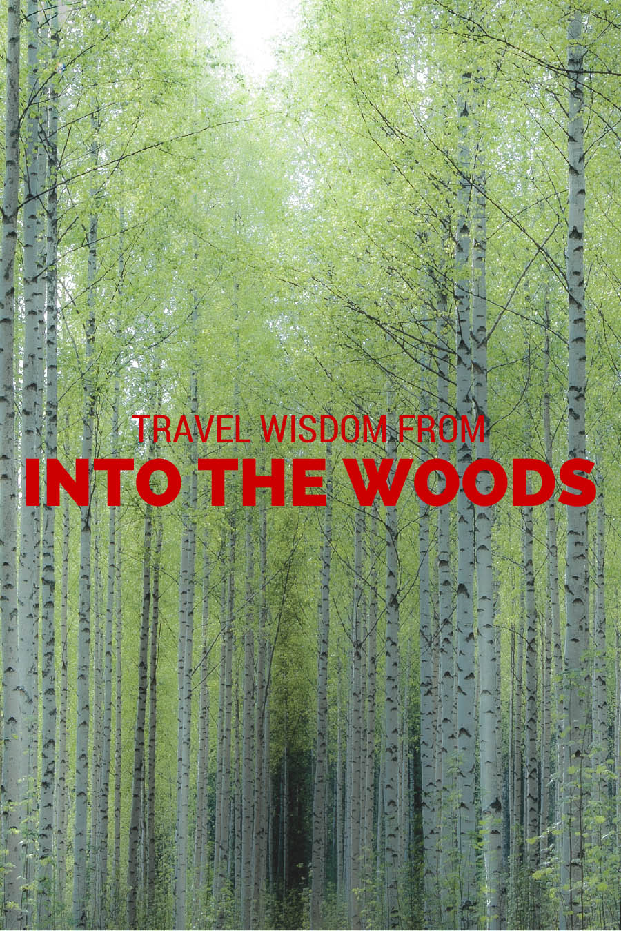 Travel Wisdom from Into the Woods